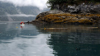 Kayaking around Puffin Island, Glacier Bay Alaska
