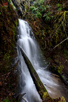Fern Rock Falls - Oregon Hwy 6
