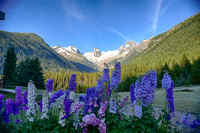 Houndstooth Spire and Lupine