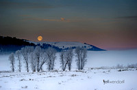 Lamar Valley Moonset